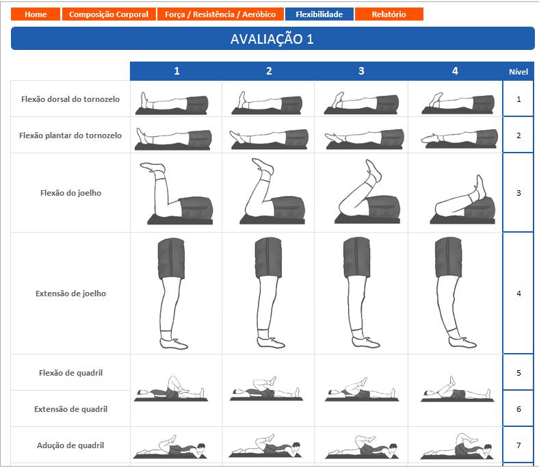 Planilha de Avaliação de Flexibilidade
